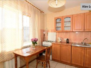 Historic centre studio in Kiev - Kiev vacation rentals