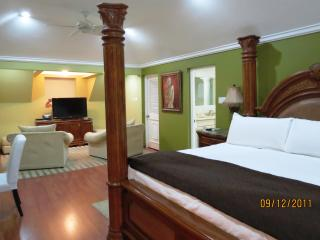Seaside Penthouse in Ocho Rios Jamaica - Ocho Rios vacation rentals
