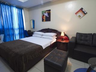 Fully Furnished Studio in Robinson's Place Manila - Manila vacation rentals