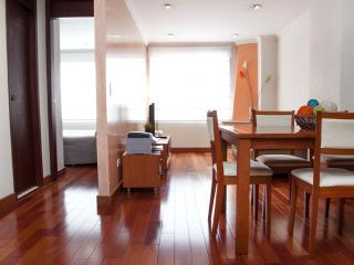 Modern 1 Bedroom Apartment in Zona T - Colombia vacation rentals