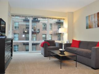 MODERN LOOP APARTMENTS FURNISHED FULL KITCHEN IN-UNIT WASHER/DRYER - Chicago vacation rentals