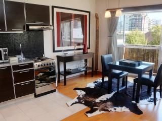 Spacious Studio with Private Terrace in Recoleta - Buenos Aires vacation rentals