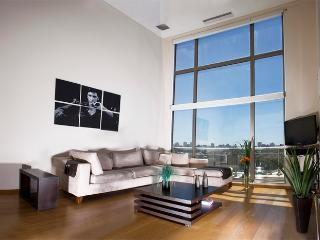 2 Bedroom Loft Apartment in Palermo Hollywood - Buenos Aires vacation rentals
