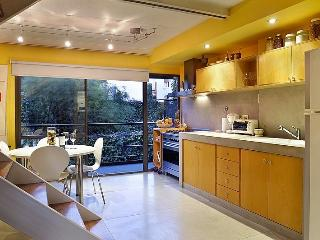 Brand New 2 Bedroom Apartment in Palermo Soho - Buenos Aires vacation rentals
