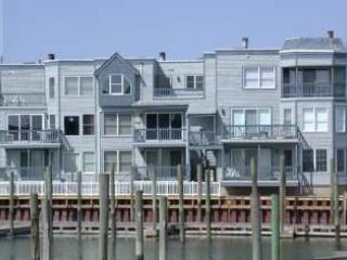 Harbor Fantasy 43465 - Image 1 - Cape May - rentals