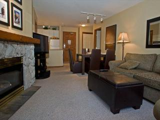 Aspens, prime ski-in, ski-out, 2 bedroom unit with BBQ & AC - Whistler vacation rentals