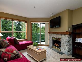 Aspens, prime ski-in, ski-out, 1 bdrm with BBQ, AC & a serene forest view - Whistler vacation rentals