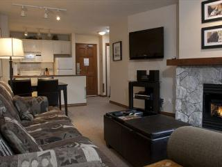 Aspens, prime ski-in, ski-out, 1 bdrm with forest/ski hill view - Whistler vacation rentals