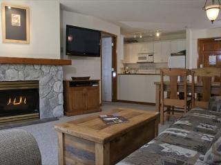 Aspens, prime ski-in, ski-out, 2 bdrm with BBQ, AC & bright mountain view - Whistler vacation rentals