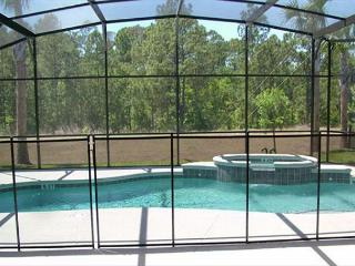 WILDER VILLA: 5 Bedroom Home with Extra Pool and Spa Privacy - Davenport vacation rentals