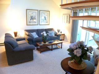 Ocean Edge Townhouse with King Bed & Pool (fees apply) - HO0451 - Brewster vacation rentals
