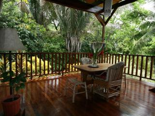 Casa Montezuma - Steps to the Beach, Private, Safe - Montezuma vacation rentals