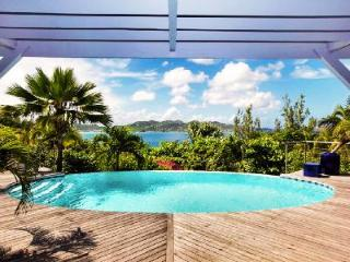 Villa Mandarine Bleue with lovely decor with infinity pool and maid service - Pointe Milou vacation rentals