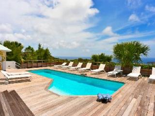 Incomparable Vina Villa, with fitness room, heated pool and housekeeping - Vitet vacation rentals