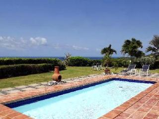 West Indian style Caribbean Pearl villa on one level with A/C,  large outdoor area & pool - Saint Croix vacation rentals