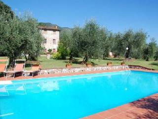 Rustic Casa Tonio boasts pristine gardens & vineyard, pool, near wineries - Lucca vacation rentals