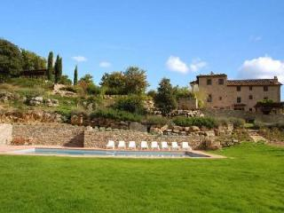 Peaceful Il Colombaio boasts vineyard views, pool and lush gardens - Tuscany vacation rentals