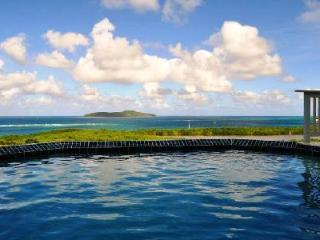 La Viridian - Lovely villa with salt water pool & beautiful ocean views - Saint Croix vacation rentals