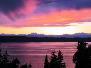 Olympic View Cottage Bed and Breakfast - Seattle Metro Area vacation rentals