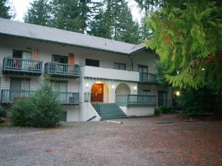 Snowline Lodge Condo #36- close to hiking and skiing at Mt. Baker! - Glacier vacation rentals