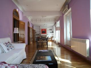 CR110MRb - Malasara y Conde Duque, Calle de Ferraz - Madrid Area vacation rentals