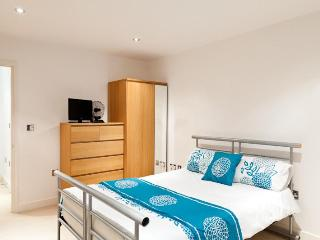 Luxury Docklands Apartment With Gym & Sauna - London vacation rentals