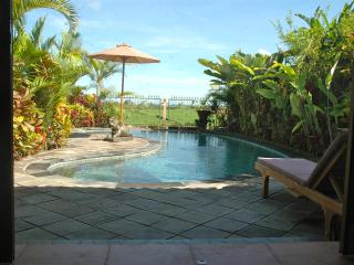 Orchid Cottage- 2 Bed (pool, wifi, ricefield view) - Ubud vacation rentals