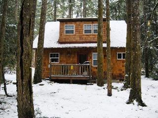 Glacier Springs Cabin #12 - With a covered porch...sweet! - Glacier vacation rentals