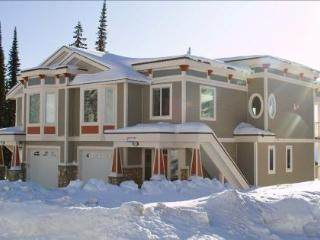 Hipoint Guest Home Luxury/Exec. New Ski In/Ski Out - Silver Star Mountain vacation rentals