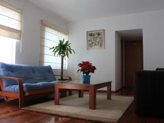 Spacious park-front apartment 20min away to center - Mexico City vacation rentals