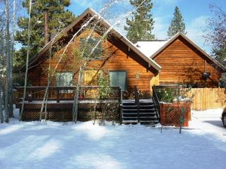 BEAUTIFUL MOUNTAIN CABIN AT A GREAT PRICE! - Truckee vacation rentals