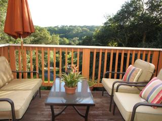 Pristine Chalk Hill valley bright big studio! - Healdsburg vacation rentals