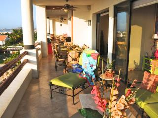 Perfect for Birthday Groups and Family Reunions! - San Jose Del Cabo vacation rentals