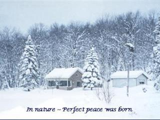 Forest Pond Cottage - Adirondacks vacation rentals