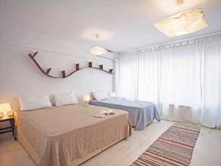 708 Gumussuyu Duplex Apartment - Istanbul vacation rentals