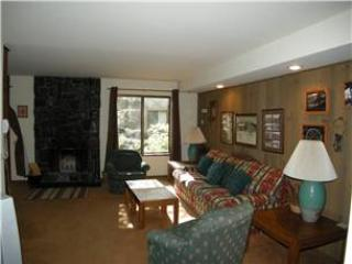 Seasons 4 - 1 Brm - 1 Bath , #123 - Mammoth Lakes vacation rentals
