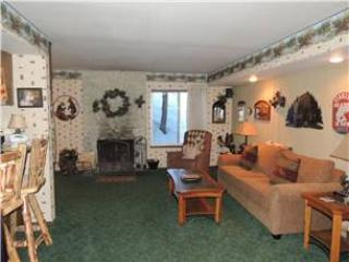 Seasons 4 - 1 Brm - 1 Bath , #191 - Image 1 - Mammoth Lakes - rentals