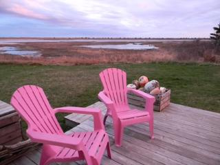 A Bird's I View Cottage, Nova Scotia - Barrington vacation rentals
