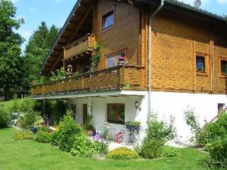 LLAG Luxury Vacation Apartment in Clausthal-Zellerfeld (Oberharz) - 721 sqft, quiet, beautiful, relaxing… - Lower Saxony vacation rentals