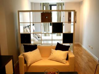 STUDY CASTELLANA 1C PARKING - Madrid vacation rentals