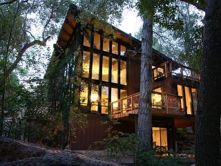 Great 2014 Rates *** Stream Side Modern Retreat - South Central Colorado vacation rentals