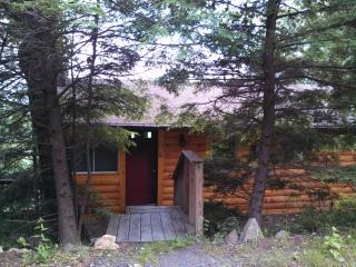 1 bedroom mountain cabin east of Asheville, NC - Black Mountain vacation rentals