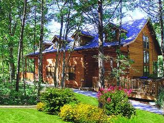 Branson Cabins at Grand Mountain - Branson vacation rentals
