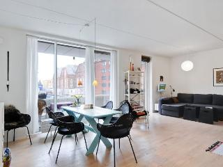 New and modern Copenhagen apartment - Copenhagen vacation rentals
