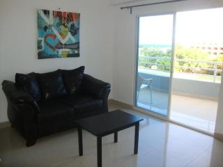2 Bedroom apartment, great location, New building - Santo Domingo vacation rentals