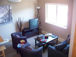 Walking distance to downtown McCall, ID, Sleeps 6 - McCall vacation rentals