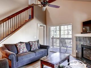 Beautiful Swans Nest (PEL1507two) - Breckenridge vacation rentals