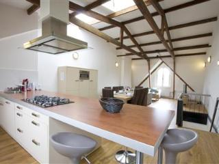 Magnolia Penthouse - Amsterdam vacation rentals