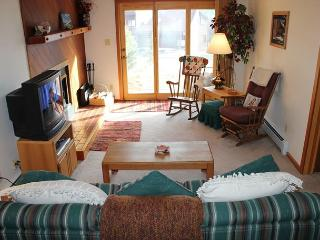 SS300 Attractive Condo w/Fireplace, Clubhouse, Wifi - Silverthorne vacation rentals