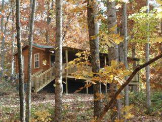 Mountain Cabin in Apple Country Hendersonville, NC - Hendersonville vacation rentals